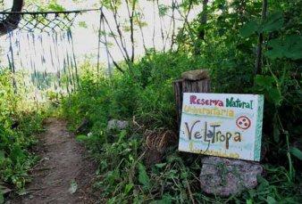 Desalojaron Velatropa, la ecoaldea instalada en tierras de la Ciudad Universitaria