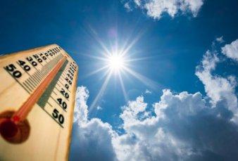 Calentamiento Global: Los últimos cuatro años fueron los más calurosos y crece la preocupación
