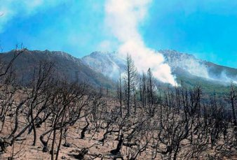 Buscan controlar varios focos de incendio cerca de Bariloche