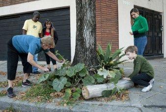 En Villa Devoto, un grupo de vecinos montaron una huerta en las veredas