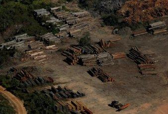 Se acelera con Bolsonaro la deforestación en la Amazonia