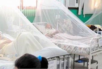 Alerta en Misiones: por las temperaturas primaverales siguen los casos de dengue