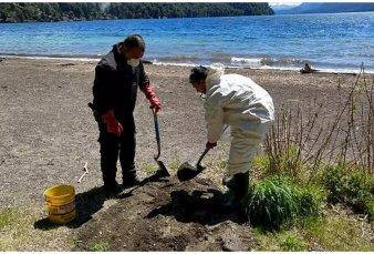 """Por la """"invasión"""" de ratas, cierran por 5 semanas los lagos en La Angostura"""