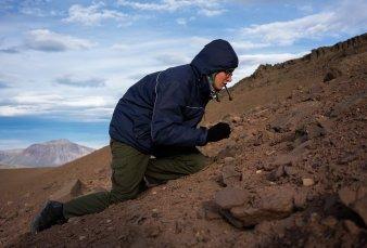Descubren un mundo fosilizado a 30 kilómetros de El Calafate