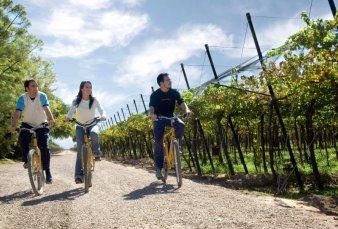 Con eje en el vino y el turismo aventura, Mendoza espera un verano récord