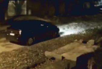 "Un ex diputado mató a la perra del barrio de un escopetazo: ""Todos le daban de comer, la asesinó a sangre fría"""