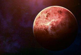Hallazgo científico: descubren posibles signos de vida en Venus
