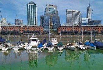 Las aguas del Río de la Plata se pusieron verdes: expertos analizarán los riesgos