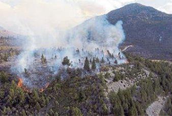 Un incendio fuera de control afecta más de 1000 hectáreas en Río Negro