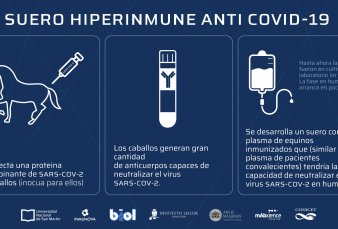 Comienza a distribuirse el suero equino hiperinmune para tratamientos de Covid