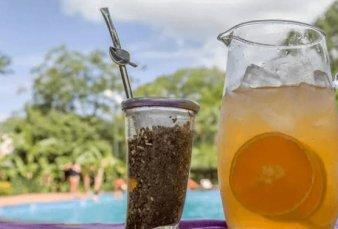 Siete empresas compiten por el negocio del tereré, una bebida que es furor entre los jóvenes