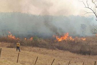 Crecen los focos de incendio en el Delta por la quema de pastizales