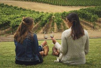 Crece producción de vino bonaerense y busca ganar terreno en el enoturismo
